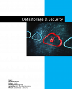 Moduleopdracht Datastorage & security